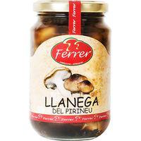 Ferrer Lentinus Pirineu flascó